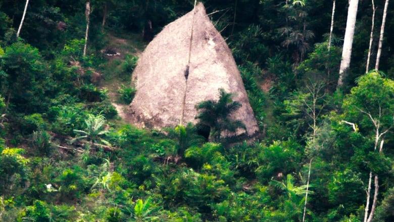 В лесах Амазонки дрон нашел индейцев затерянного племени (видео)