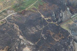В Ирландии пожар открыл спасительный знак времен Второй мировой