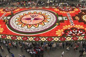 В Брюсселе стартовал фестиваль «Ковер из цветов»