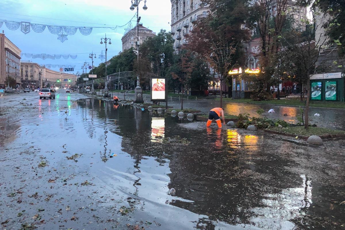 Ливень в Киеве: поваленные деревья и затопленные улицы