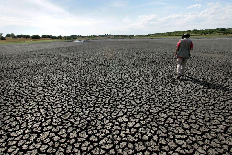 Засуха в Европе: какие страны пострадали больше всего?