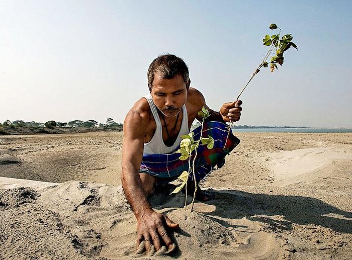 По дереву в день в течение 40 лет: мужчина в одиночку посадил лес