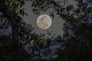 Что такое мини-луны и как ученые собираются их использовать?