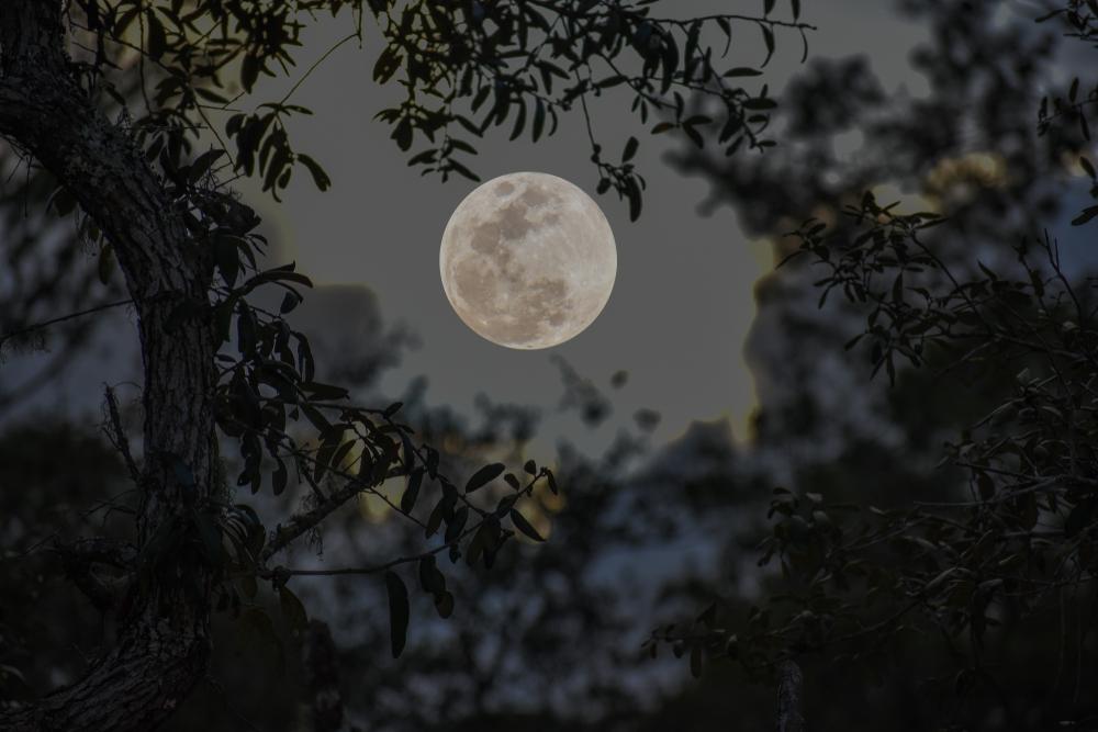 Что такое мини-луны и как ученые собираются их использовать?.Вокруг Света. Украина
