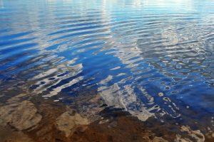 В ЮАР найдены старейшие свидетельства речной жизни