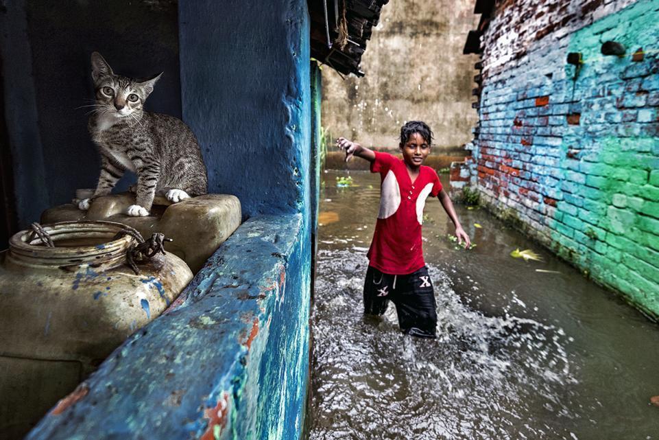 Наша хрупкая планета: победители конкурса экологического фото 2018 Наша хрупкая планета: победители конкурса экологического фото 2018 14 raju ghosh waterlogged area