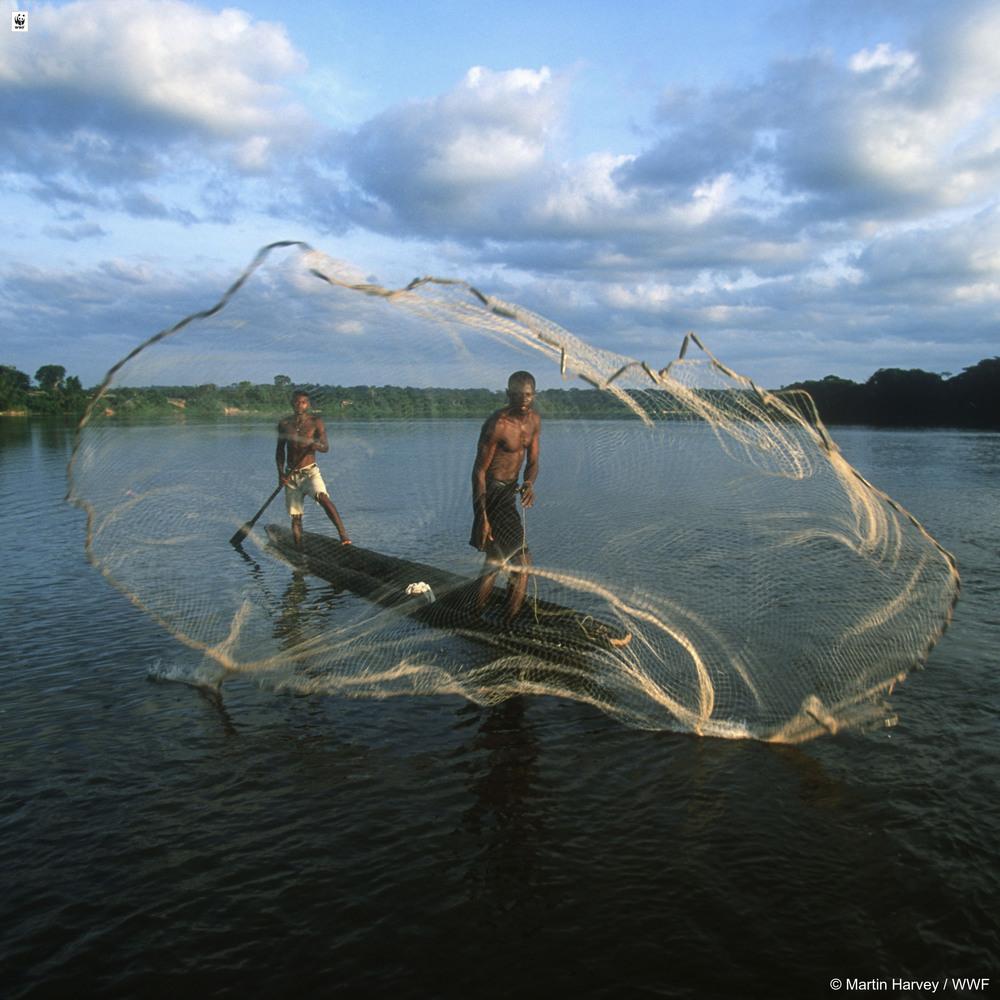 Вода заканчивается: 10 отрезвляющих фактов о реках мира