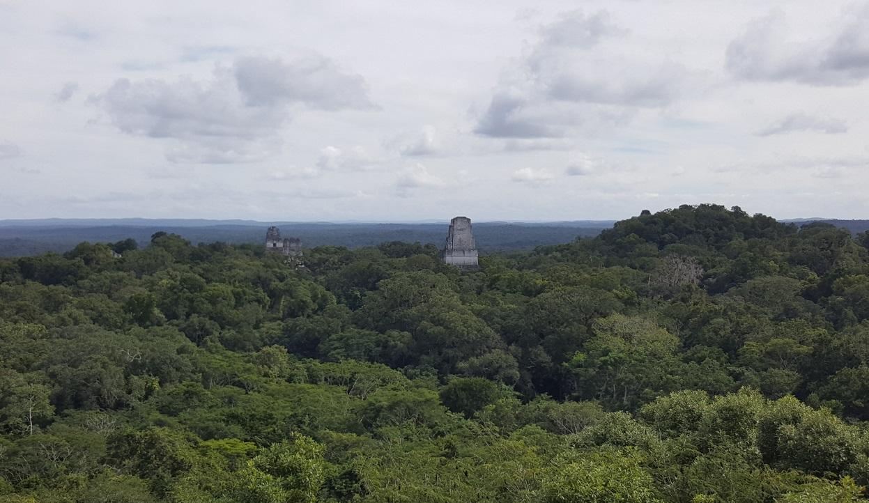 В лесах Гватемалы нашли скрытый мегаполис древних майя