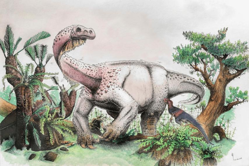 В Южной Африке нашли предка гигантских динозавров.Вокруг Света. Украина