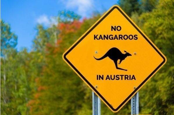 На севере Австрии заметили кенгуру