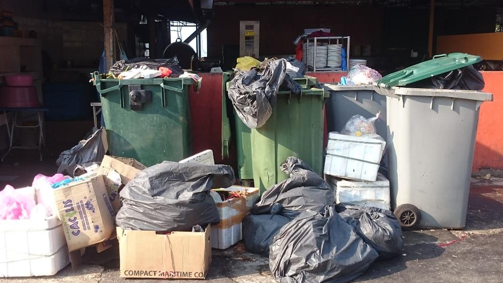 Завалит мусором: эксперты спрогнозировали объем отходов в 2050 году