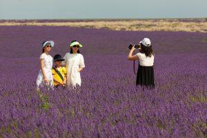 День туризма: 5 интересных фактов о путешествиях и их последствиях