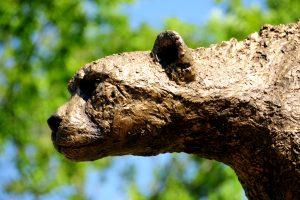 В древних зоопарках животных приносили в жертву