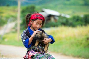 В Ханое запретили есть собак. На время эпидемии