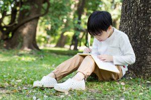 Зелень вокруг школы укрепляет память детей