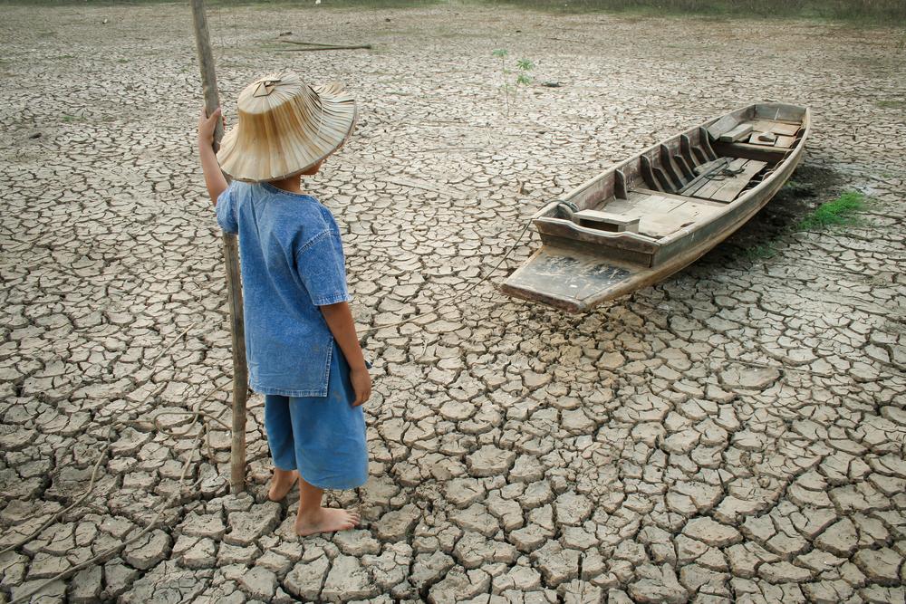 Google рассказал, кого больше всего волнуют изменения климата