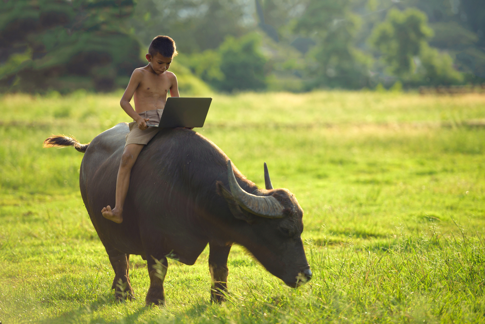 Туристы задолжали $13 тысяч за полчаса во вьетнамском интернете