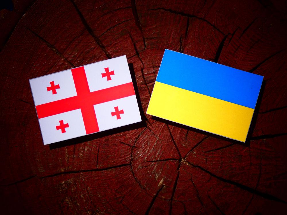Поездки из Украины в Грузию по внутренним паспортам: когда и как