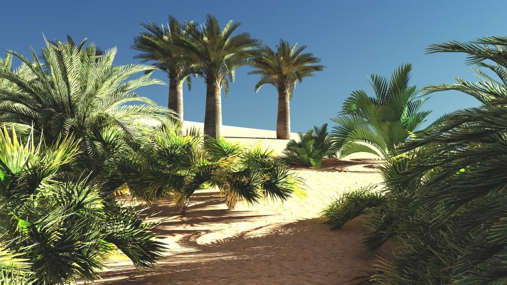 Превратят ли ветряные и солнечные электростанции Сахару в цветущий сад?