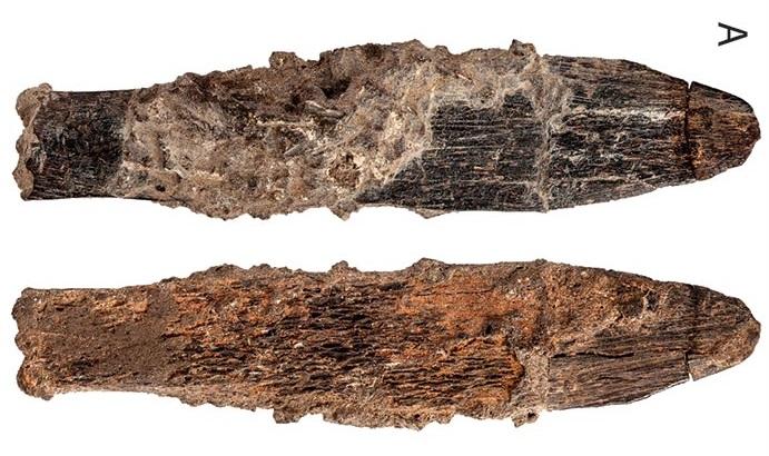 В Марокко нашли древнейший костяной нож