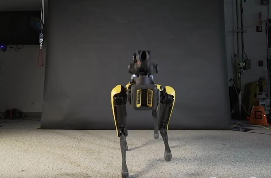 Робот-пес станцевал тверк лучше, чем люди