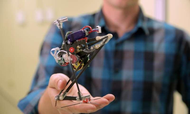 В США показали одноногого робота – прыгуна для медитаций.Вокруг Света. Украина