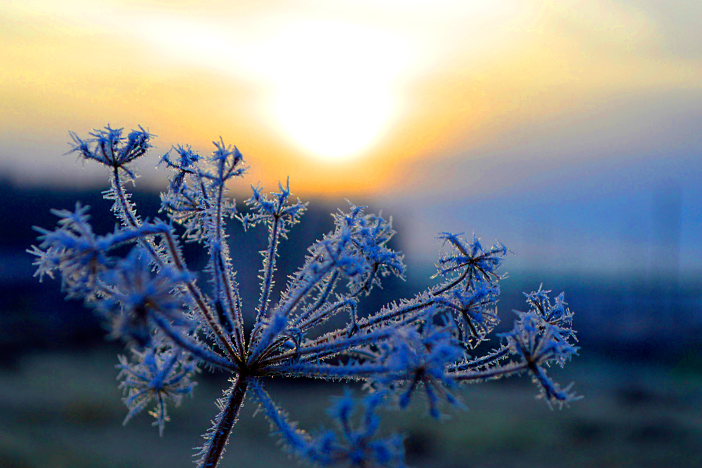 В октябре Украину ждут морозы до -12 °C