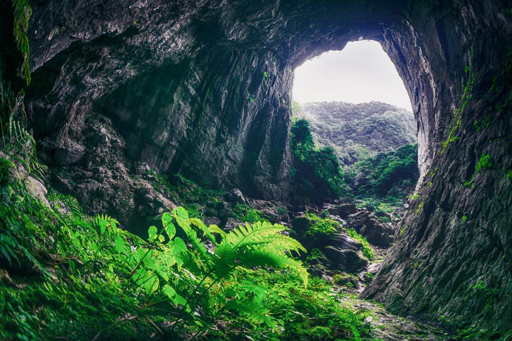 Одну из красивейших пещер мира открыли в Китае благодаря провалу грунта