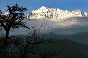 Группа альпинистов погибла в Непале при сходе лавины