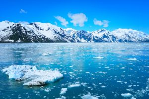 На Аляске опять аномально потеплела вода