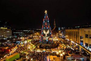 В Дортмунде установили самую большую в мире рождественскую елку