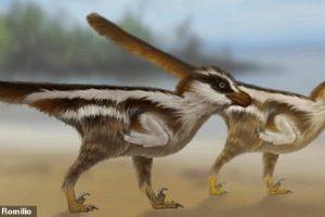 В Южной Корее нашли следы самого крохотного динозавра в мире