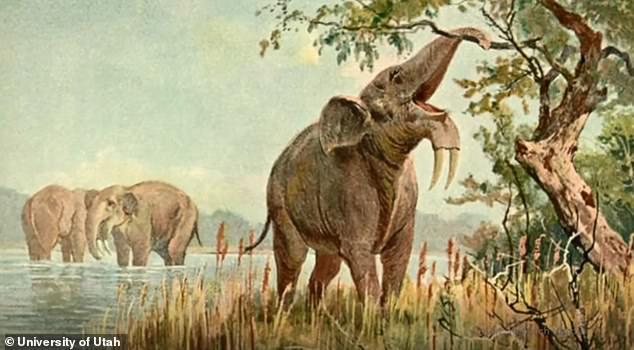 Человек не виноват: гигантские животные вымерли из-за изменений климата.Вокруг Света. Украина