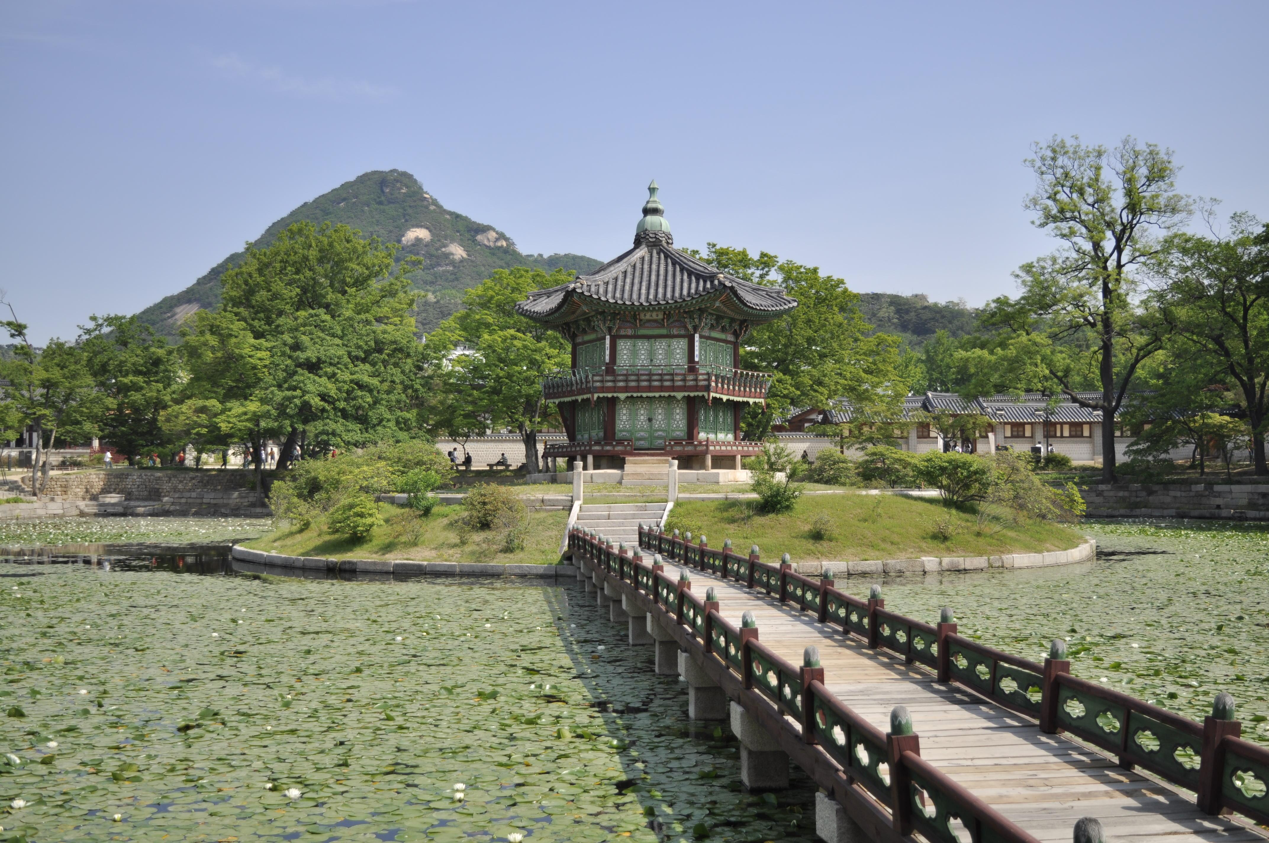 Тем временем в Сеуле: о переезде украинской семьи в Южную Корею