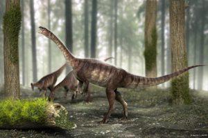 В Бразилии нашли новый вид длинношеего динозавра-вегетарианца