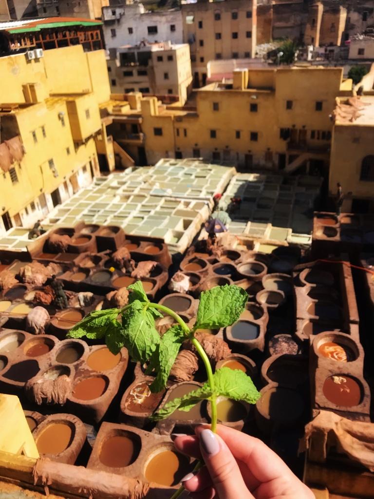 1001 ночь в Марокко: восточная сказка без хеппи-энда IMG 7349