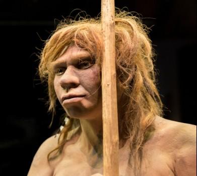 Неандертальцы и современные люди дали многочисленное потомство