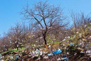 Поселок во Львовской области отказался от полиэтилена