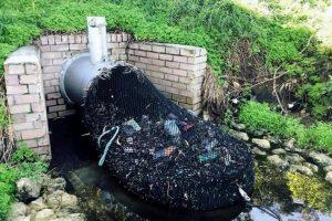 В Австралии начали просеивать воду, чтобы не загрязнять реки