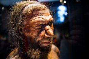 Неандертальцы дышали иначе, чем современные люди, и ходили прямо