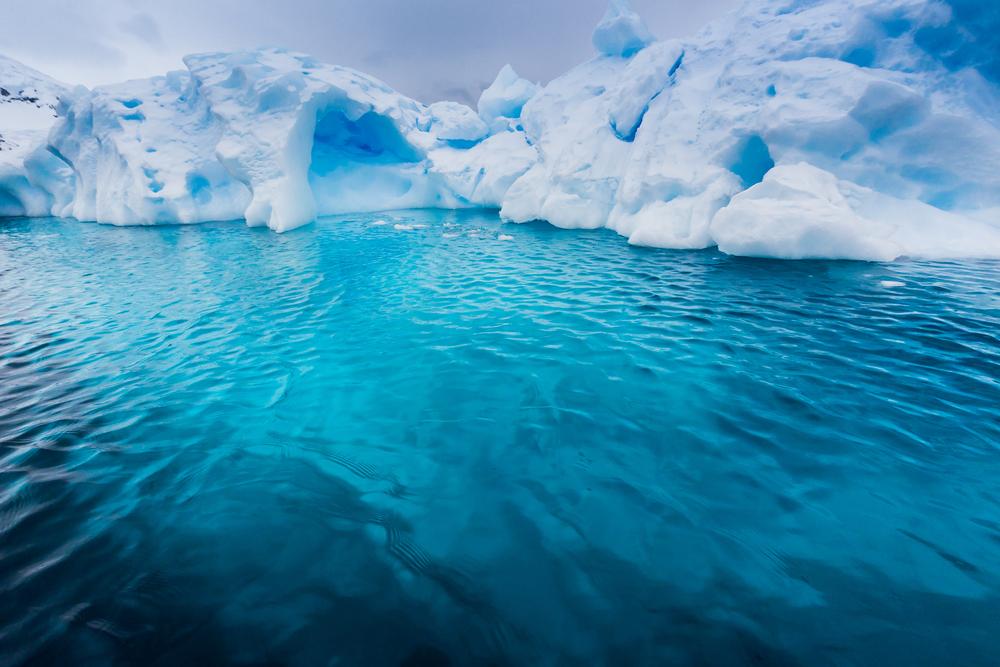 От Антарктиды откололся айсберг размером с Запорожье