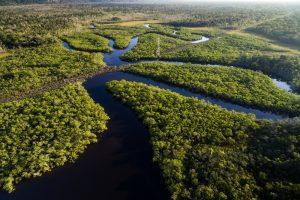 Индейцы хотят превратить леса Амазонки в самый большой заповедник планеты