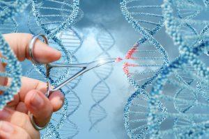 Китай заявил о рождении первых в мире генетически модифицированных людей