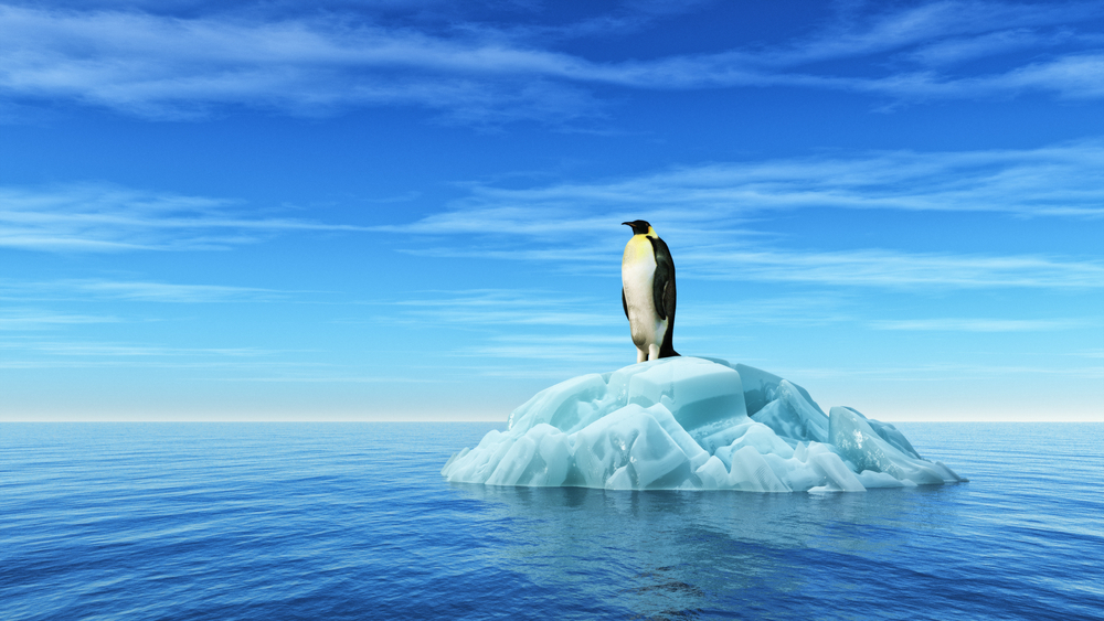 Трое против: заповедник в Антарктике не появится из-за нескольких стран