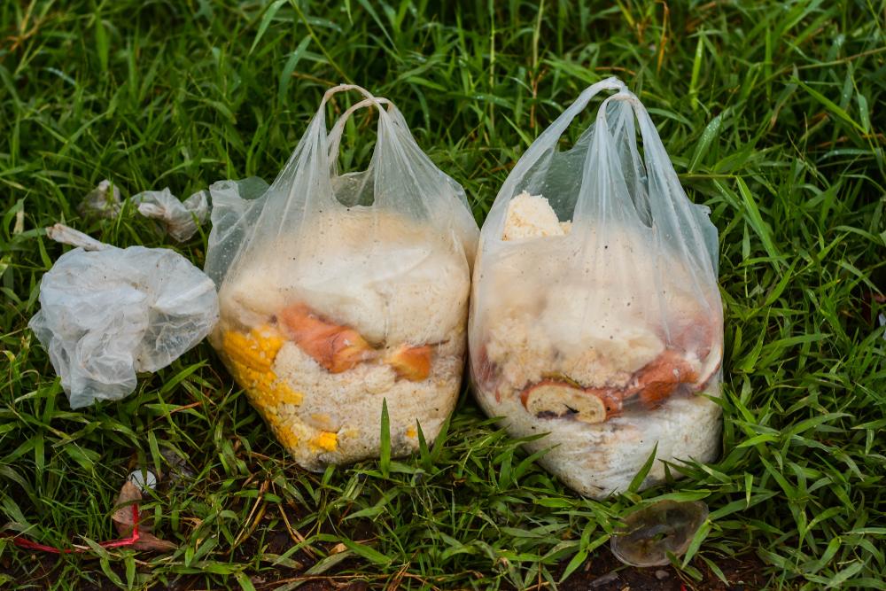 Европейцы выбрасывают около 30% пищи.Вокруг Света. Украина