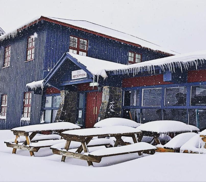 Австралию за неделю до лета завалило снегом.Вокруг Света. Украина