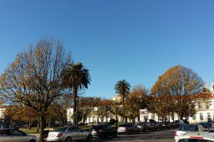 Вареная треска и прозрачная елка: как празднуют Рождество в Португалии
