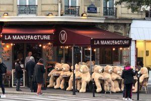 В окрестностях Парижа замечены десятки медведей