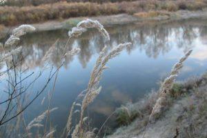 Путешествие в себя: личный опыт 10-дневной практики молчания