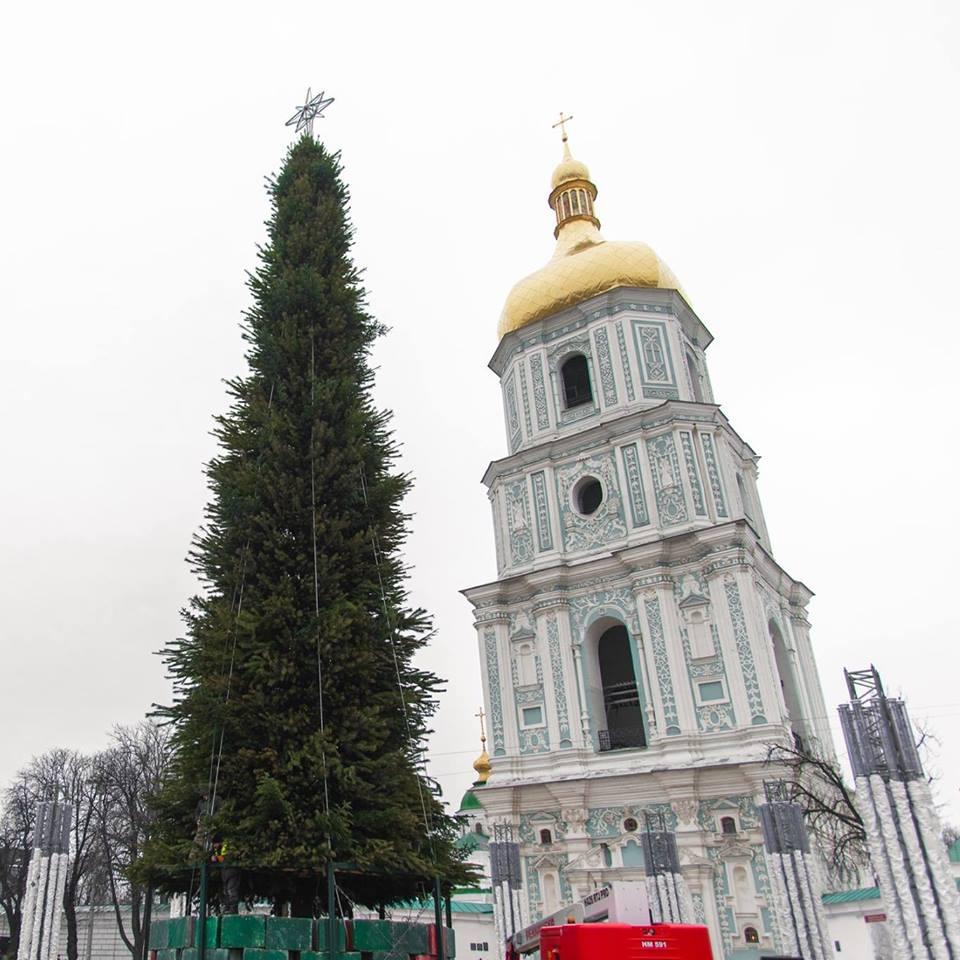 В День святого Николая в Киеве зажгут главную елку